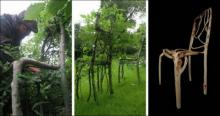 ბრიტანელი ავეჯს ზრდის (11 ფოტო)
