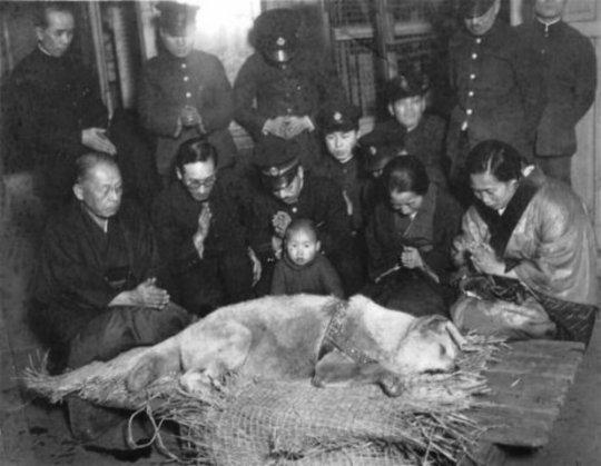 Hachiko - funeral